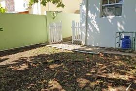 Shaded shared garden with some fruit trees.
