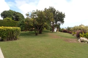 Another View of the Lawn