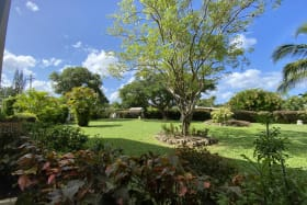 Peaceful communal gardens