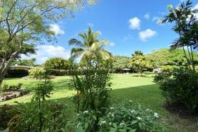 Serene garden views