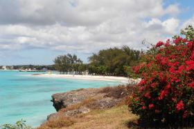 Miami beach within walking distance