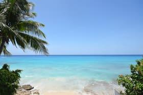 Caribbean Sea Views