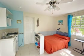 Bed & Kitchen Area