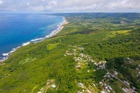 Underdeveloped oceanfront land