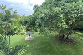 View of Garden from #318