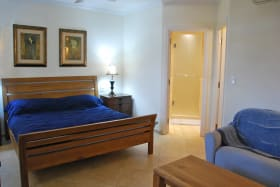 Large spacious guest bedroom