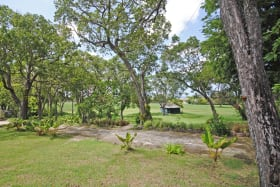 View through the mahogany trees to the lawn, the Holders Polo Field and sea beyond