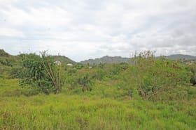 Section A, Walkers, St. Andrew. 19 Acres of Agricultural land