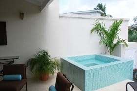 Patio with private plunge pool