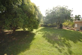 Fruit trees and garden