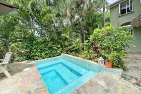 Plunge Pool with jungle Shower