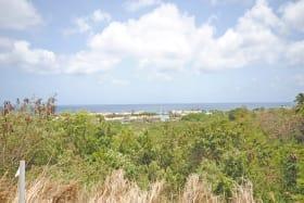 Sea views and gully views