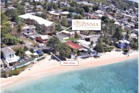 Aerial view of Zinnia