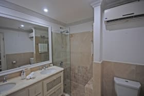 Main bathroom double vanity shower and air conditioned