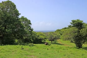 Island View Lot 2