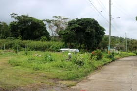 Access Road and Nearby Cemetery