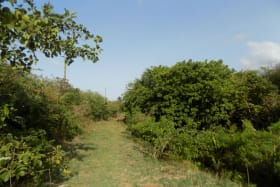 Pathway to the land; land to the right