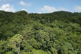 View facing west, to the hills above the land