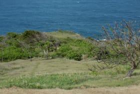 View overlooking Coastal Reserve
