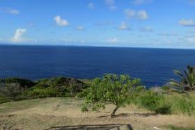 Undulating Landscape with Seaviews