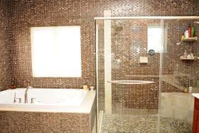 Jacuzzi Tub & Shower