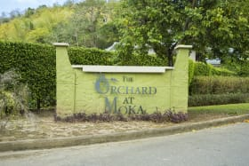 The Orchard Lot 47