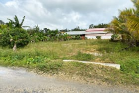Francilla Avenue, Lot 6