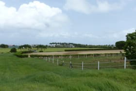 Far side of the lot towards the Paddock