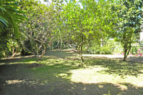 Spacious grounds with mature landscaping
