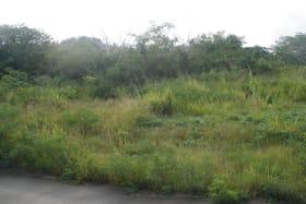 Applegrove Lot 34 as at June 25, 2013