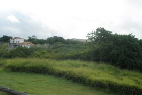 View of lot from adjacent plot (Lot 33) looking northeast