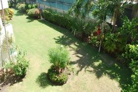 Garden views from patio