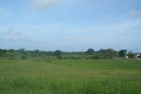 Kendall Garden Lands