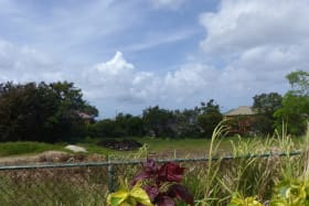 View from polo villas across the lot