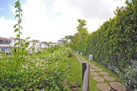 Pathway from beachside to Secret Garden
