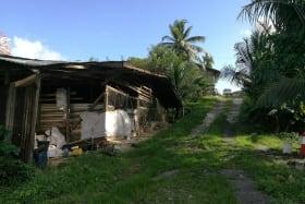 Bon Air Road, Coryal 187