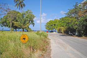 One of two beach accesses within easy walking distance  of lot 215