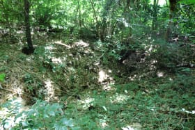 View of ravine on subject lot