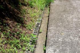 Concrete drain in place along access road