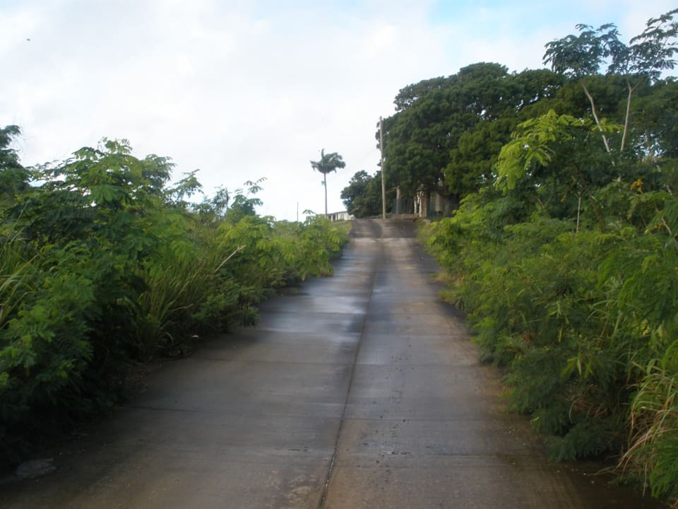 View of development road looking south