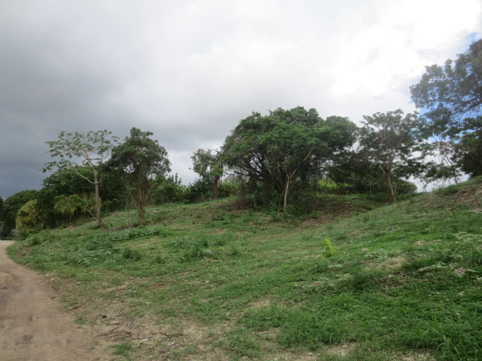 View of lot from road