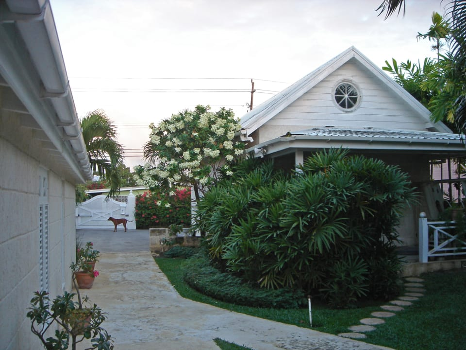 Gardens and view of the driveway and entrance gate
