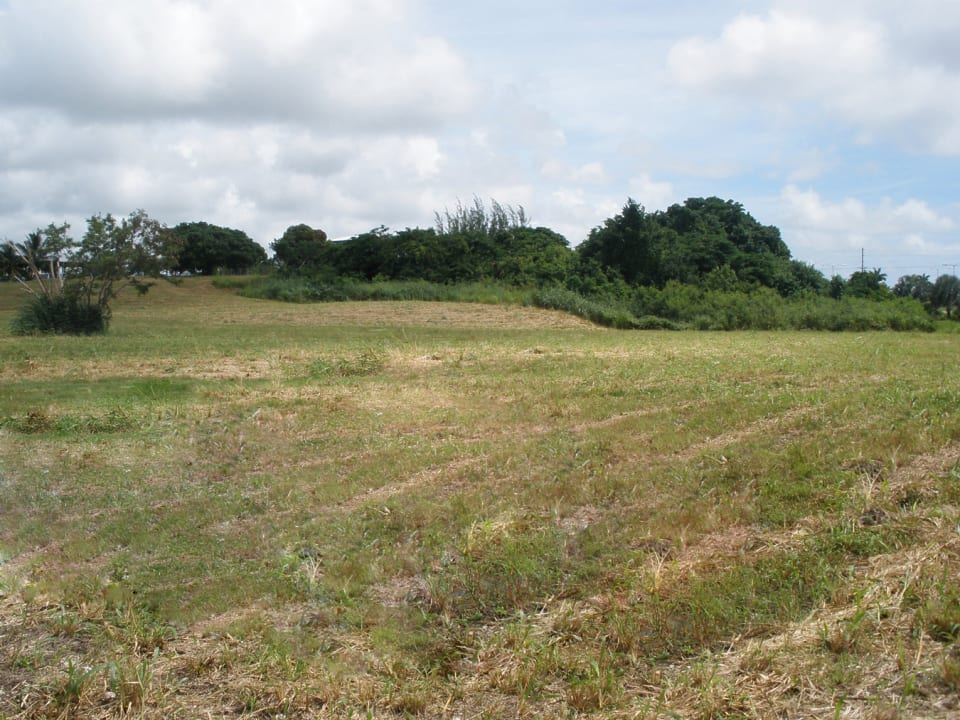Northern view of lots