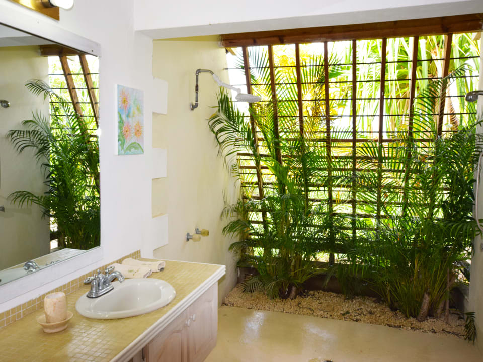 Bathroom and Open Shower