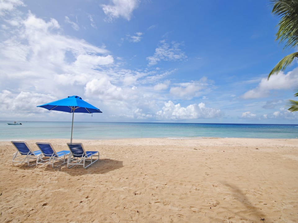 Idyllic beach equipped with loungers and umbrellas