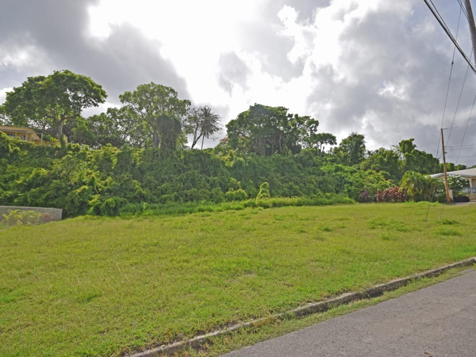 Colleton Gardens Lot 8