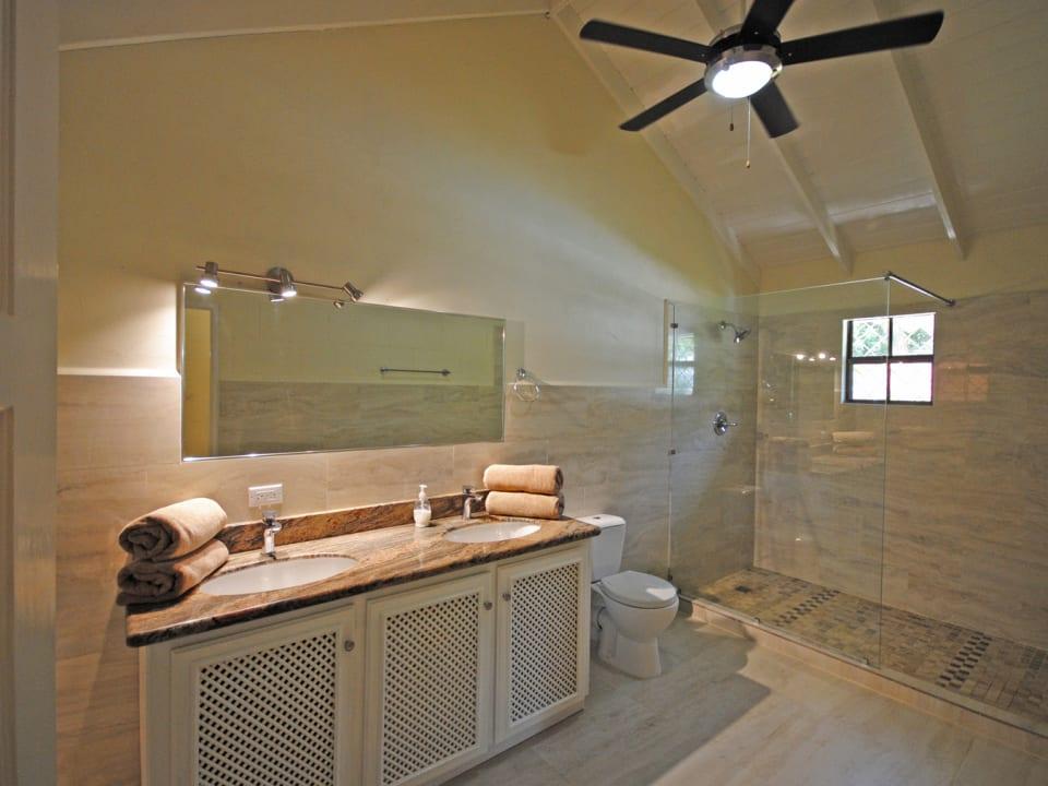 Beautiful new master bathroom