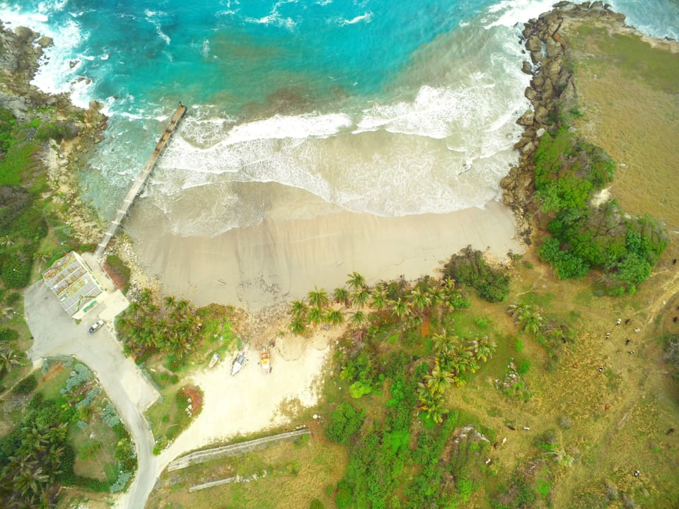 Aerial view of the beach in front of the site