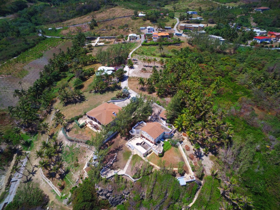 Aerial view of Newcastle neighborhood