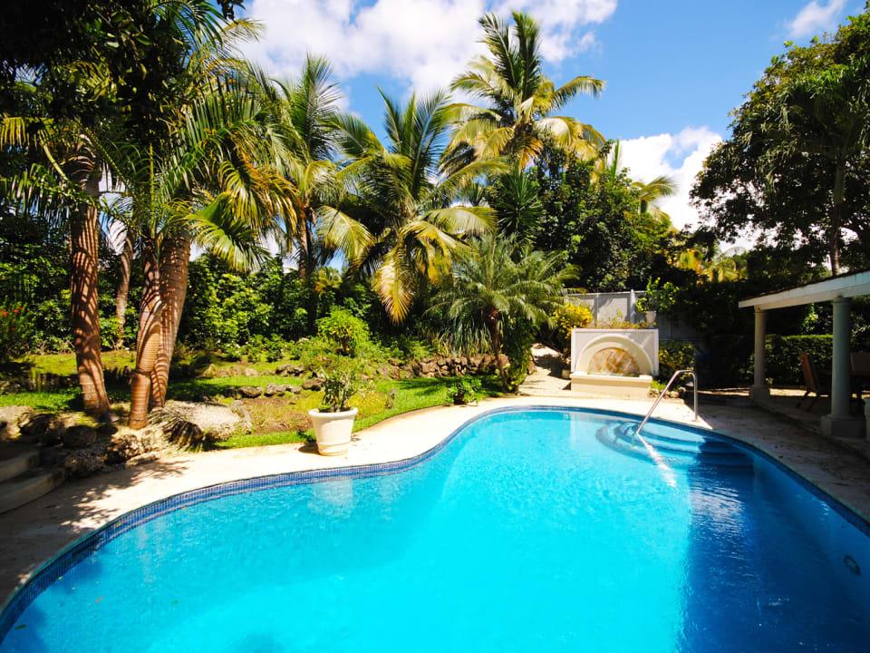 Large freeform swimming pool